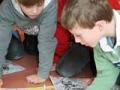 2008-10-wo-wohnen_wege-finden
